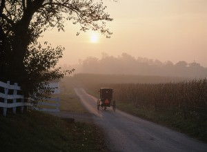 Amish Studies | The Young Center for Anabaptist and Pietist