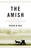 The Amish: A Concise Introduction book cover