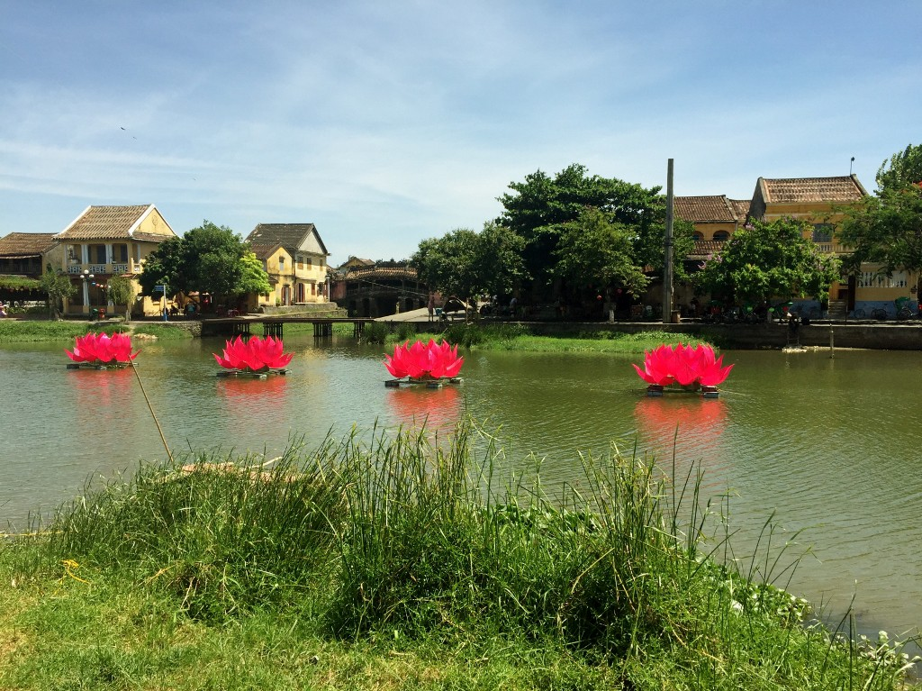 water view with pink flowers - Hoi An